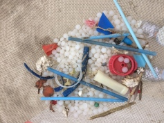 Nurdles, bottle rings and Q tips are often the most common types of pollution in the sand