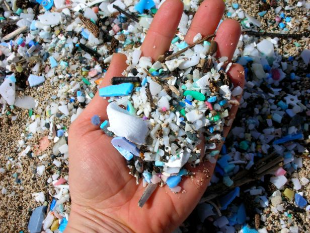 Close up of microplastics found on beach.