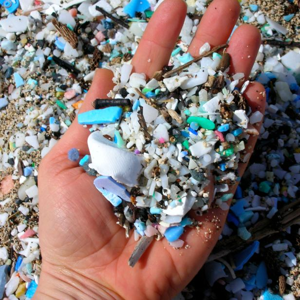Close up of microplastics found on beach.