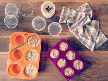 leftovers recipe homemade cat food diy